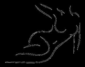 lipodesenhobiomodulacaocorporal
